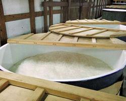 発酵中のタンク